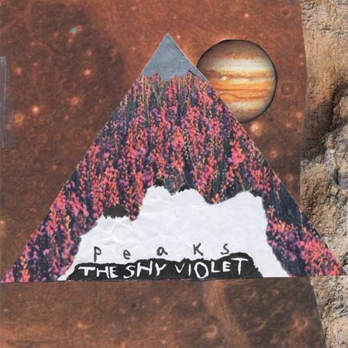 The Shy Violet - Harper's Colors