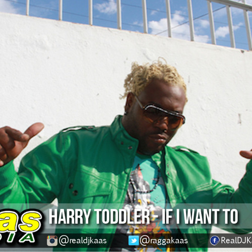 Harry Toddler - If I Want To [Hiphop Remix] Dancehall 2015