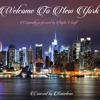 Kameleon - Welcome To New York (Taylor Swift Cover)