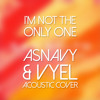 Sam Smith - I'm Not The Only One (Asnavy & VYEL Acoustic Cover)