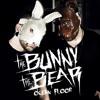 Interview: The Bunny The Bear (Matt)