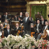 Conducting The Vienna Philharmonic