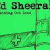 Ed Sheeran (Acoustic Cover)