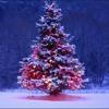 Thats Christmas to me - Pentatonix (Cover)