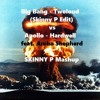 Twoloud -Big Bang vs Hardwell -  Apollo (Skinny P  Mashup)FREE DOWNLOAD