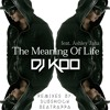 DJ Koo feat. Ashley Jana - The Meaning Of Life [Bonerizing Records] Out Now!