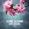 Cedric Zeyenne feat. Evelyn - Body Language (Radio Edit)