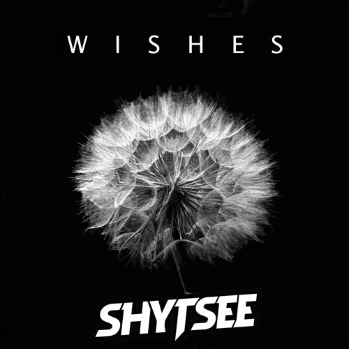 Shytsee - Wishes (Original Mix)