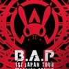 BAP WARRIOR BEGINS -0 ZERO