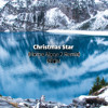 Christmas Star (Home Alone 2 Remix) - reom