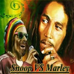 Snoop/Marley Mashup
