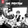 Irresistible - One Direction - Cover