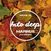 Download Marinus feat. Woendoe - Into Deep | Volume #3 Mp3