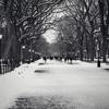 Winter Song- Sara Bareilles & Ingrid Michaelson
