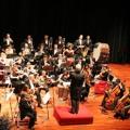 Antonín Dvořák - Sinfonía nº 9 en Mi menor (2º mov.)