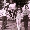 "Shocking Blue ""Love Buzz"" (herr2003 edit)"