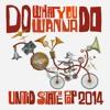 Do What You Wanna Do 2014 Mash-Up-- DJ Earworm