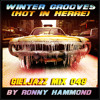 MIXTAPE : Winter Grooves (Hot in Herre)(HaMMoND iN ThE MiXx) (Mix 048 For The GielJazz Radioshow)