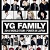 2NE1 x Lee Hi - If I were you (YG family Concert Japan 2014)