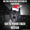 INSANITY WOLF CHRISTMAS SONG!