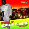 DancehallExpolsion TakeOver Vol.1 (Mixed by Dj Bashment)