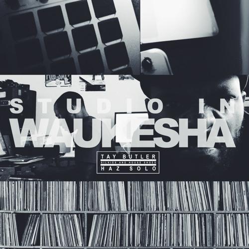 SNHS – Studio In Waukesha