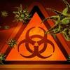 03. SystemCrash & Error In Dimension - Infect 177 Bpm