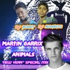MARTIN GARIX ''ANIMAL SONG'' 2014 (PUNCH & EFFECTS) MIX BY DJ SUMANTH 'N' BUNNY