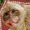 Aaja Ni Billo (Dance Floor) Bikram Singh Feat. Bellringer.mp3