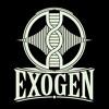 Download Celtic Love (Instrumental) prod. by Exogen Mp3