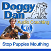 How To Stop A Mouthing Puppy Free Audio From Doggy Dan