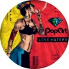 Re Dupre & Vintage Culture - Love Haters