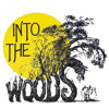 On The Steps Of The Palace- Into the Woods