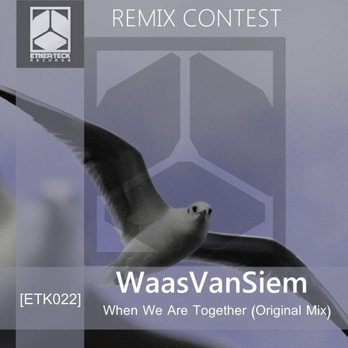 Waas Van Siem - When We Are Together (Luan Awfulitch Remix) [REMIX CONTEST]