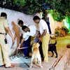 Bengaluru Blast :Woman killed and 3 injured.