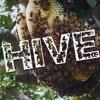 Hive (Audio)