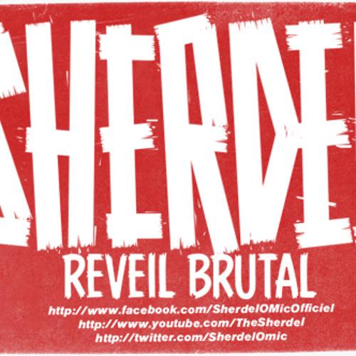 Sherdel Réveil Brutal (prod ArtAknidBeats )