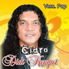 Cidro (Vers. Pop) - Didi Kempot mp3