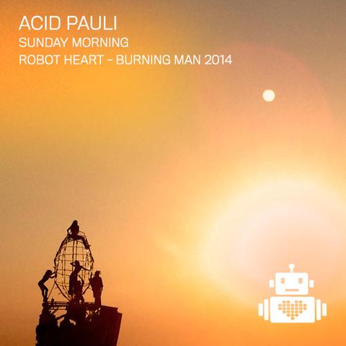 Acid Pauli - Robot Heart - Burning Man 2014