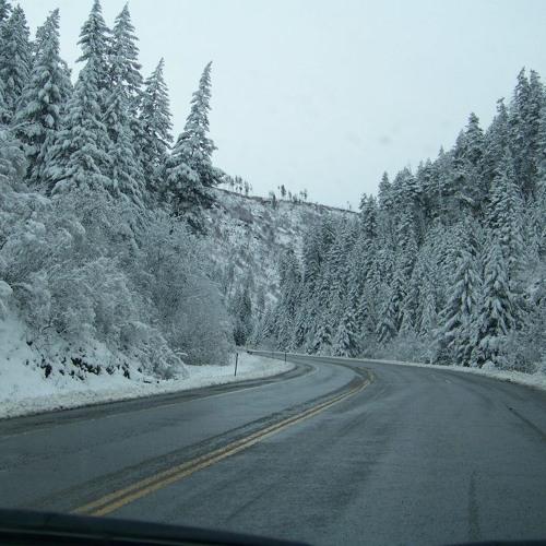 Winter's Summer (excerpts)