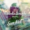 MelodicSounds Presents: Sam Feldt | Mixtape [Free Download + Tracklist]
