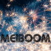 The bOOm selection BestOf'14 Part I (Avicii, Heldens, Lily Wood, Guetta, Coldplay)