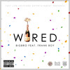 BigBro - Wired (feat. Frank Boy)