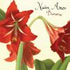 """V68-5: Naïm Amor - Dansons (12"""" vinyl LP)"""