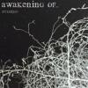 Awakening of...(promo).mp3