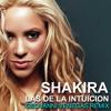 Shakira - Las De La Intuicion (Venegas Elektromode Remix)