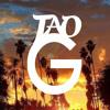 G-Funk Instrumental By Tao G Musik