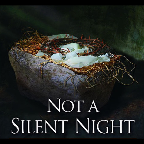 Not a Silent Night (Christmas 2014)