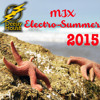 Download Mix Electro-Summer 2015 by Dj House Mp3
