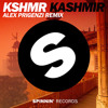 KASHMIR (Alex Prigenzi Bootleg)[Supported by NICKY ROMERO]